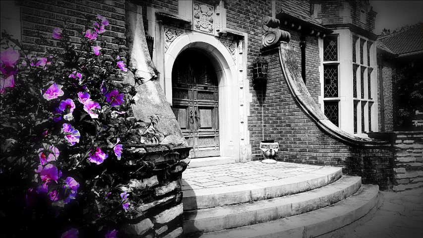 blackandwhite,colorsplash,hdr,nature,oldhouses