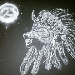 drawing art wolf