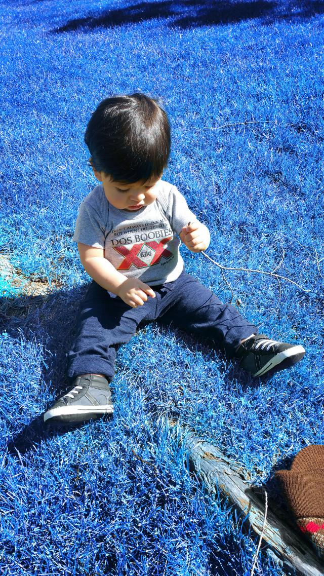 #myboy #myworld #babyboy #baby #growing #outside #spring #stick #drseuss #cookiemonster #Dodgers #la #ladodgers #losangelesdodgers #larams #losangelesrams #rams