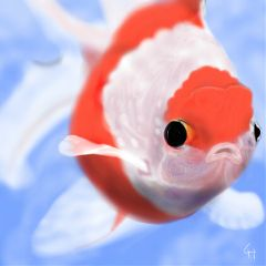 picsart goldfish drawing boscreativechallenge