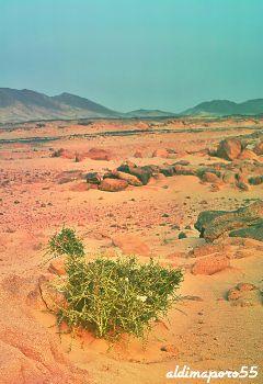 photography nature desert beautifypicsart