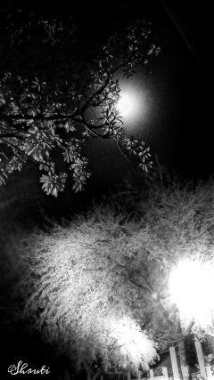 lightanddark ortoneffect blackandwhite moon night