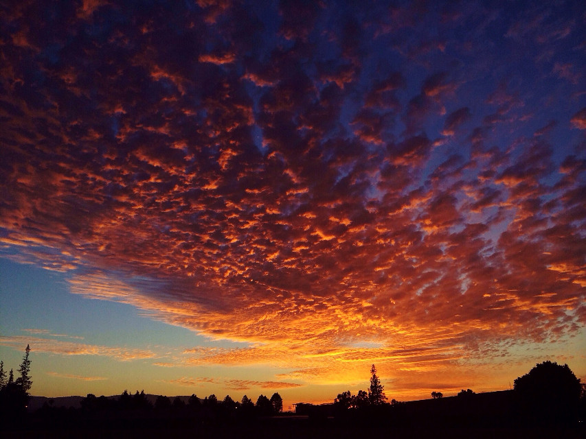 """Amazing clouds + sunset on """"The Field""""!! #sunset #sunsetsky #clouds #cloudsandsky #amazing #colorful"""