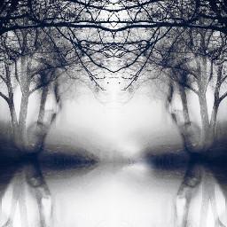 art blackandwhite mirror