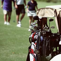 golfing golfclub golf