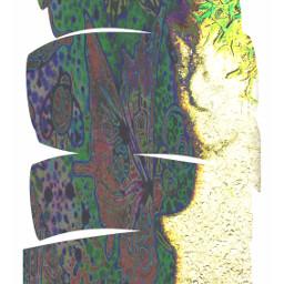 shapemask shadows picsarttools curves doubleexposure batik texture