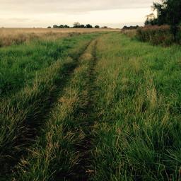 walkinghome home walking river grass