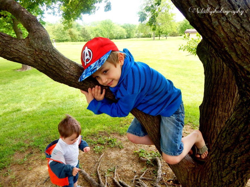 #vibrant  #family  #fun  #holiday  #trees  #photography