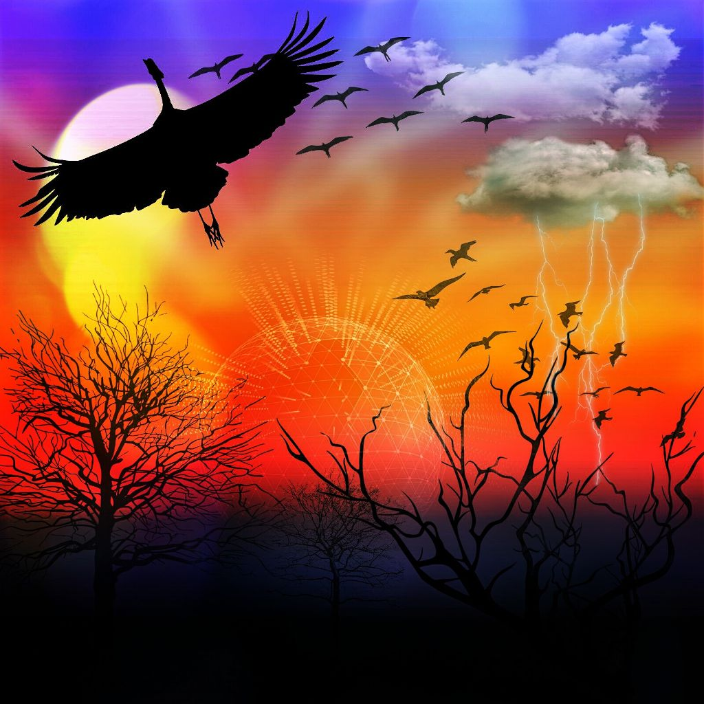 From free to edit #clipart  birds #nature #art