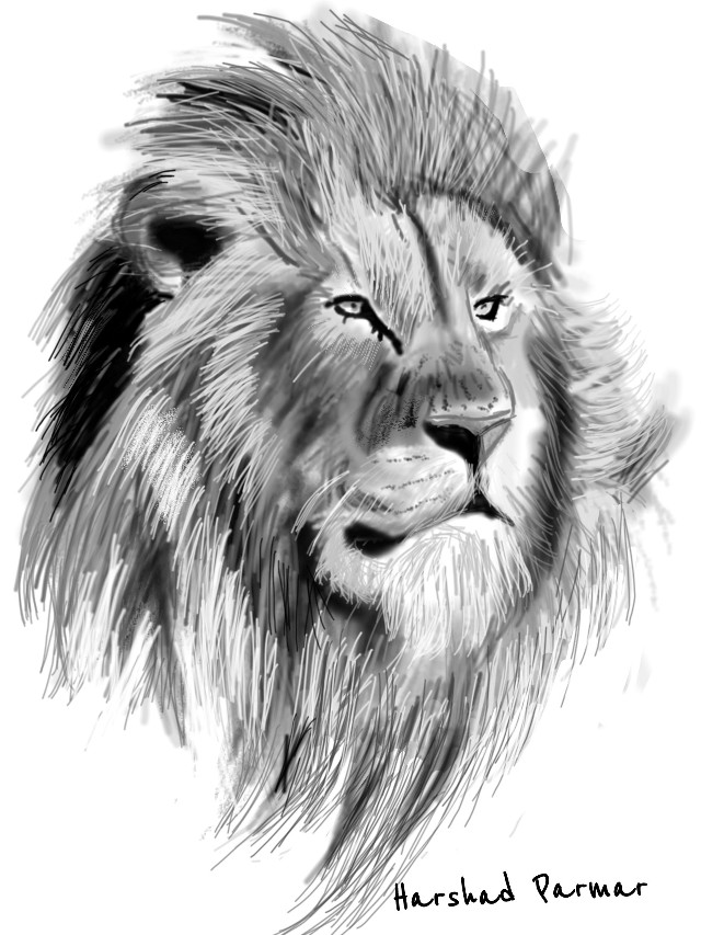 #pencilart #lion# for all leos out there, i m 2 leo