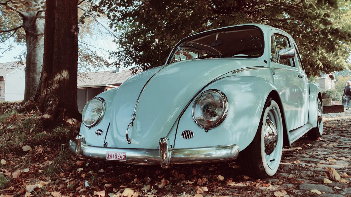 #photography #retro #cars #volkswagen  #cox  #vintage  #VW #